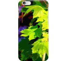 Springtime Maple Forest iPhone Case/Skin