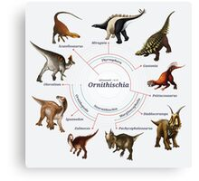 Ornithischia: The Cladogram Canvas Print