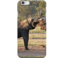 Playful Elephants iPhone Case/Skin