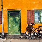 Sunny Copenhagen by Paul Davis