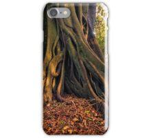 Wingham Brush iPhone Case/Skin