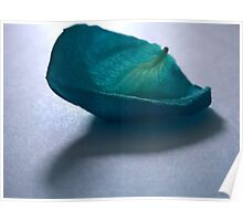 Blue Rose Petal Poster