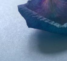 Purple Rose Petal Sticker