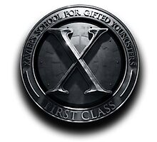 X - man School for gifted youngster Photographic Print