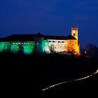 Irish Ljubljana Castle by Ian Middleton