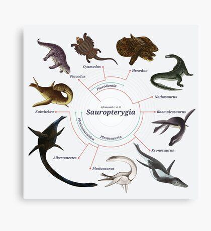 Sauropterygia: The Cladogram Canvas Print