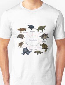 Testudinata: The Cladogram T-Shirt