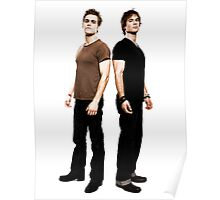 Stefan and Damon Salvatore Brothers Poster
