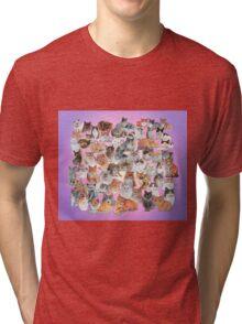 All Cat Portraits Tri-blend T-Shirt