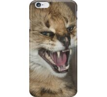 A very angry cat iPhone Case/Skin