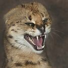 A very angry cat by Thea 65