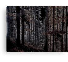 Night Trees Canvas Print
