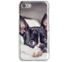 Fina the Boston Terrier Puppy iPhone Case/Skin