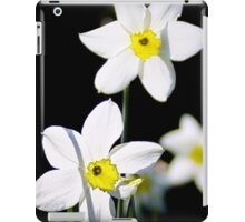White windmills iPad Case/Skin