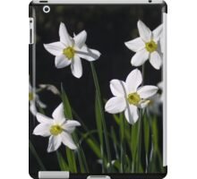 Pretty white daffs iPad Case/Skin