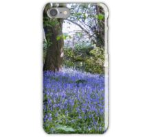 Natures Garden : BlueBell Woods iPhone Case/Skin