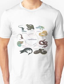 Lepidosauria: The Cladogram T-Shirt