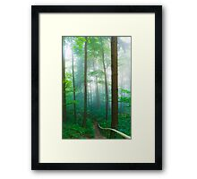 Traces X Framed Print