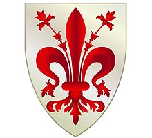 Coat of Arms of Florence Photographic Print