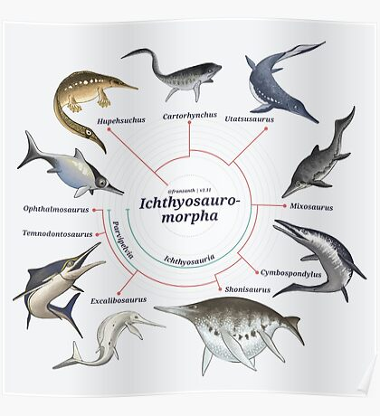 Ichthyosauromorpha: The Cladogram Poster