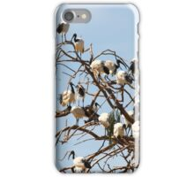 ONe Day In A Willow TRee... iPhone Case/Skin
