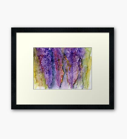 Wisteria #1 – Daily painting #758 Framed Print