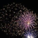 Fireworks abstract 8 2015 by marybedy