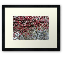 Spring Has Sprung Photographic Watercolor Framed Print