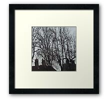 Tall Tree Rooftops Framed Print