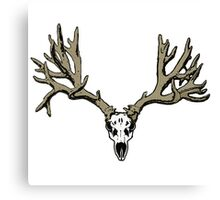 Velvet deer skull Canvas Print