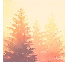 Cedar Trees Silhouette - Foggy Forest Painting Light Version Photographic Print