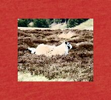 Moorland Sheep... Tri-blend T-Shirt