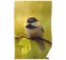 Cute Black Capped Chickadee on Spring Green Tree Branch Poster