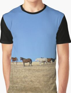 Horses in the Pasture  Graphic T-Shirt