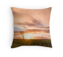 Panoramic view of a flowering  yellow daisy flowers Throw Pillow