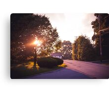 Golden Hour I Canvas Print