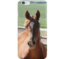 Horse Friends  iPhone Case/Skin