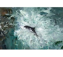 Leaping Salmon Photographic Print