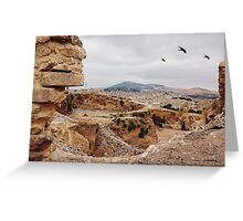 Three Birds Over Landfill in Morocco Greeting Card