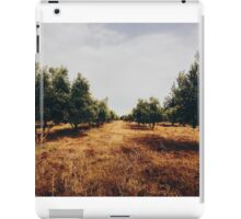 Olive Tree Plantation iPad Case/Skin