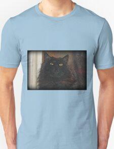 Doorstop T-Shirt