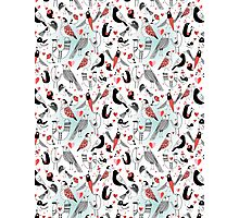 Graphic pattern in love birds  Photographic Print