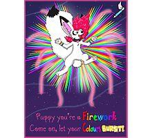 Puppy firework Photographic Print