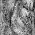 Tree Spirits. by Andy Nawroski