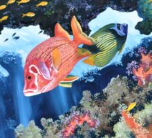 Squirrelfish in the Red Sea Sticker
