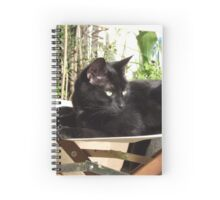 Boo the cat Spiral Notebook