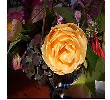 Yellow rose and purple Hydrangea. Photographic Print