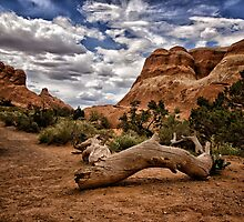 Hiking At Arches - Arches National Park, Utah Photographic Print