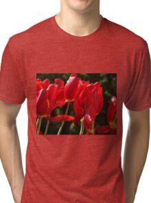Sunny Tulips Tri-blend T-Shirt