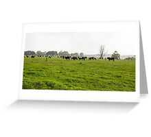 Green Meadow Landscape with Black Cows Greeting Card